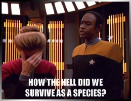 Janeway Facepalm by Sings-With-Spirits