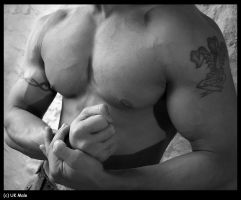 Mr Muscle by holdmycoat