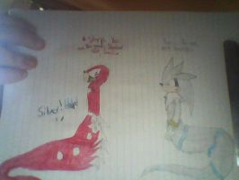 Silvails,Sonadow and Knux: You not Knuckles by SilverDragonSilver