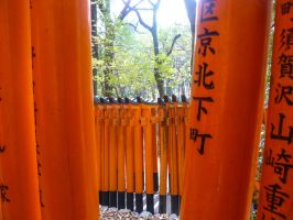 Torii 10 by thecomingwinter