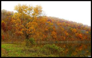 Fall at the Lake 1 by JenniferSpriggs