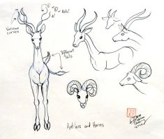 Draw Deer 3 by Diana-Huang
