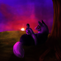 Sunset by Silvadruid