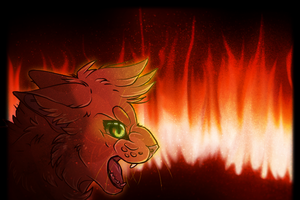 TGB ||Fire in Your Eyes by rainwolfeh