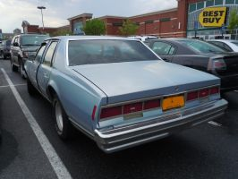 1979 Chevrolet Caprice II by Brooklyn47