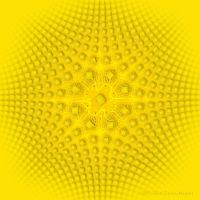 Yellow by 1footonthedawn