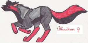 bloodtear wolf 2 by kitoridragoness