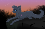 Light up by Spottedfire94