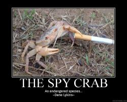 The Spy Crab by Macropus-Rufus