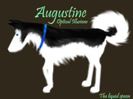 Augustine by Theliquidspoon