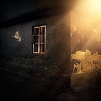 Window to Your Soul by Karezoid