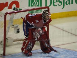 Carey Price by HabsFan16
