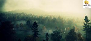 On A Foggy Morning 02 Cgs by Massi-San