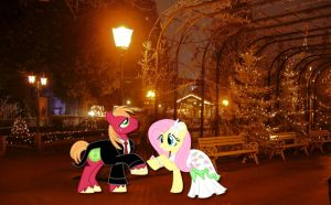 Wedding night in Europapark by Phi1997