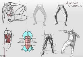 Anatomy Studies 1 by FelFortune