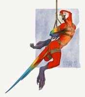 Shibari Macaw Red by FlyQueen