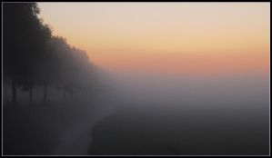 Morning mist in polderland by jchanders