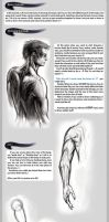 Basic drawing tutorial by Tanathiel