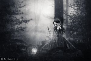 L'automne(black and white) by ZedLord-Art