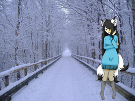 ~.:Winter Trail:.~ by AsktheGirls