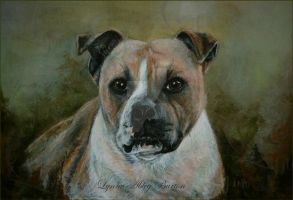 Staffie by Lynne-Abley-Burton