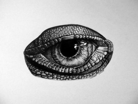 Lizard Eye Drawing by LethalChris