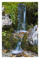 Alpine Spring - 02 by AndreasResch