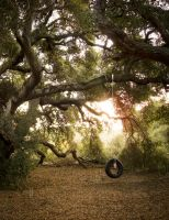 Tire Swing by Nathan-Ruby