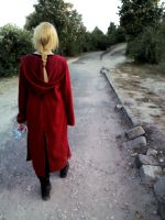 FMA - Long way, far from home by TheSaligia