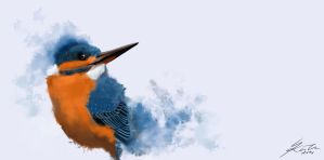 Kingfisher by Styrbjornk