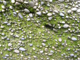 Texture - Stone 4 by SanStock