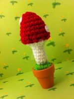 Potted Toadstool by MalonB