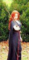 Medieval Costume 7 by SchroTN