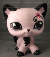 LPS Draculara Kitty 1 by enchantress41580