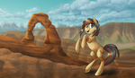 Crystal Mountain Pony Con 2015! by Zaphy1415926