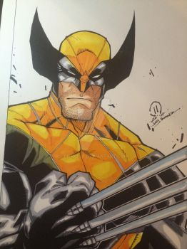 Wolverine JoeyVazquez Colors Jeremy Scully by Drakelb