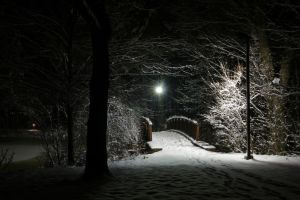 Snow-Covered Foot Bridge by dseomn