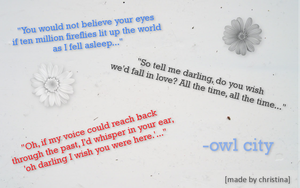 Owl City wallpaper by tinaowl