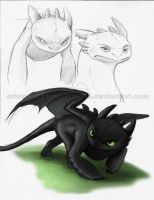 Toothless by Sythgara