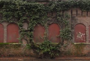 Stock - Vine-Rimmed Windows by ChimeraDragonfang