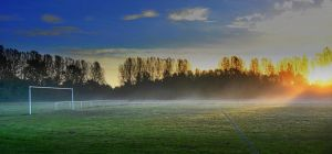 Mist across the field by phil-child