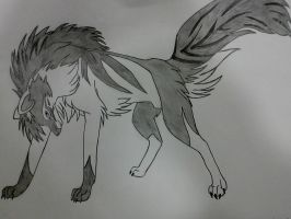 Black and White Wolf by safira94