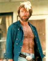 Chuck Norris.gif by DogMan93