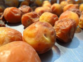 Drying Plums by Galeyan