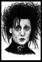 edward scissorhands by vasodelirium