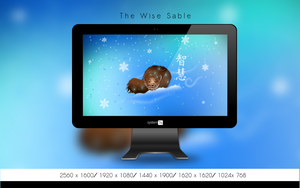 The Wise Sable Wallpaper Collection by Golden-Ribbon