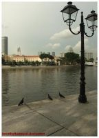 Pigeons, Lamppost and River. by breathofbetrayal