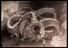 Dragon Chinois 2 by deviantetienne