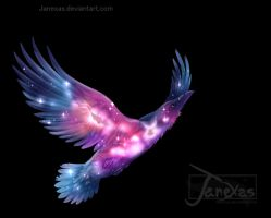 Raven Cosmic Colors by Janexas