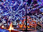 Dazzling Lights by Cee4Candy